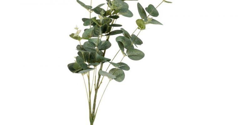 Kunstbloem Eucalyptus Groen