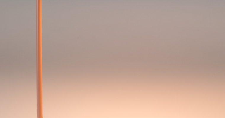 Zuiver Tafellamp Pixie – Roze   8718548043336