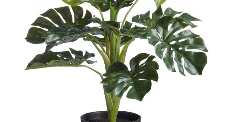 Kunstplant Monstera Groen