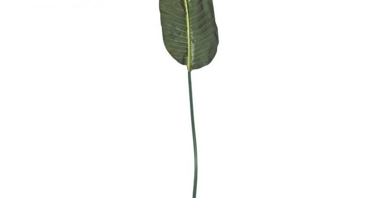 Bananenblad Kunsttak Groen
